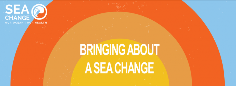 'Think big, think Ocean' SeaChange idea challenge: the winners!